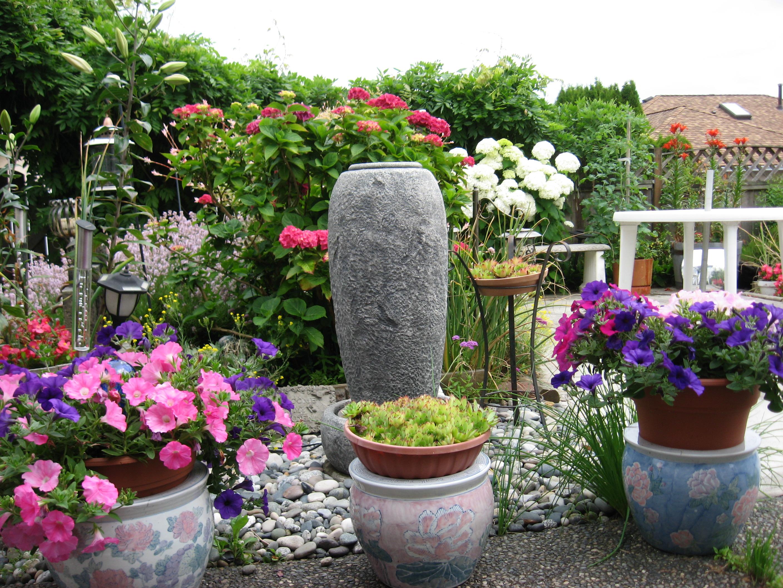 I'm an Urban Backyard Gardener | Mairlyn Smith