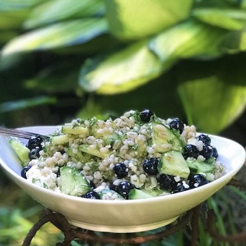 Barley and blueberry salad with fresh dill